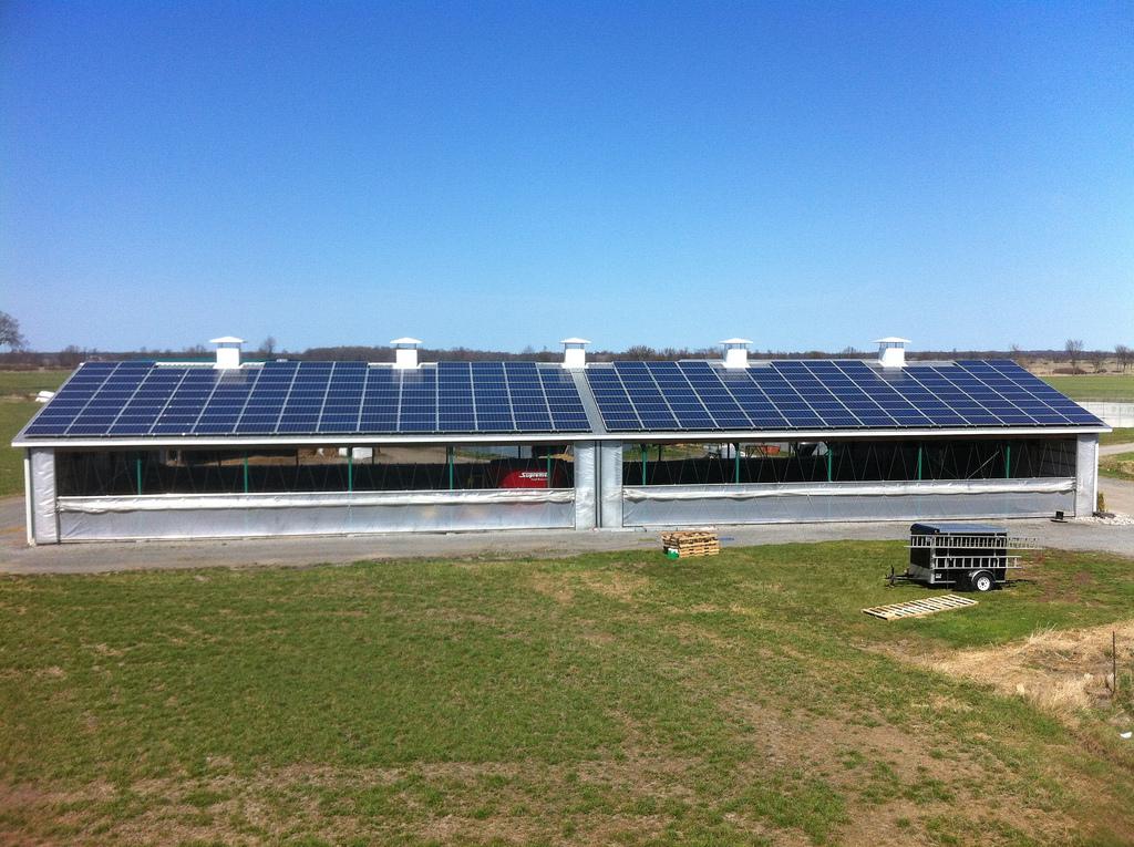 Photos Of Ontario Solar Panel Installations Eco Alternative